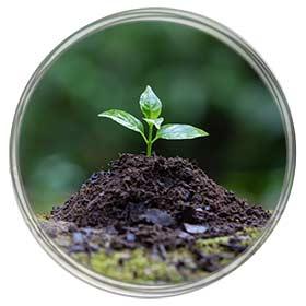 Medio ambiente 14001
